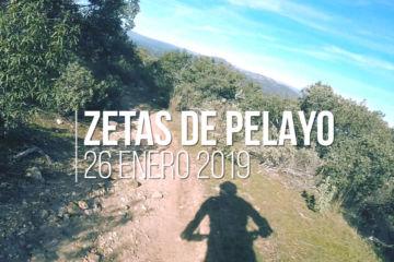 Zetas de Pelayo